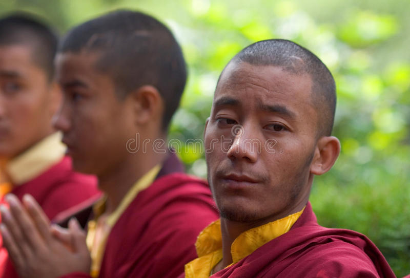 A row of Buddhist monks praying royalty free stock photo