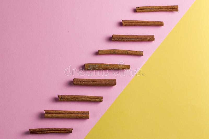 Row of cinnamon sticks from above on a bright yellow and pink background royalty free stock photos