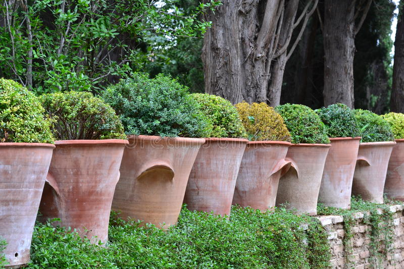 Row Of Clay Pots Royalty Free Stock Images