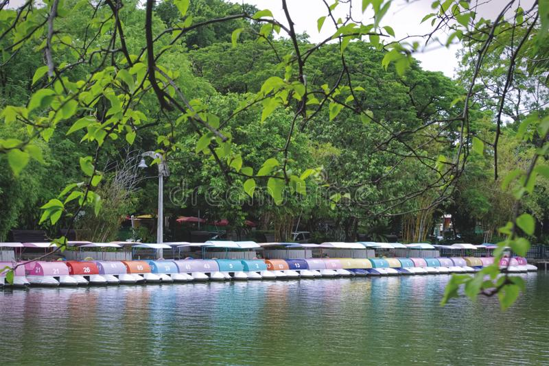 A Row of Colorful Pedal Boats at the Lake. Tranquil Scenery of A Row of Colorful Pedal Boats at the Lake stock images