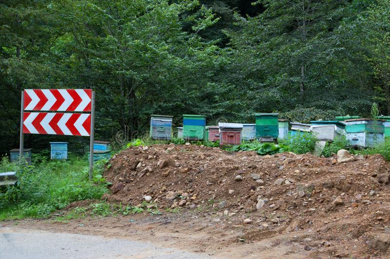 Row of colorful wooden beehives with trees in the background. Bee hives near the road. Row of colorful wooden beehives with trees in the background stock photography