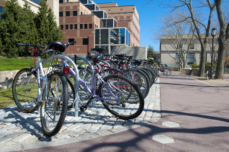 A row of commuter bicycles royalty free stock photo