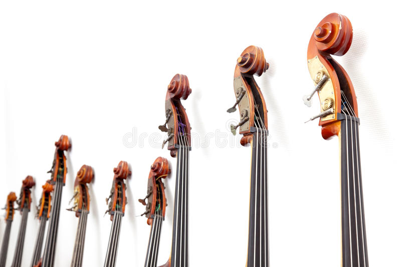 Row of double basses details against a wall. Row of double basses details leaning against a wall royalty free stock image