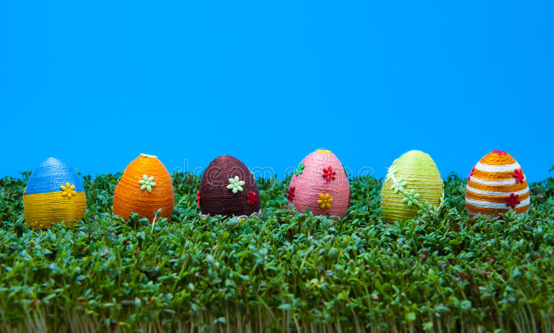 Download Row Of Easter Eggs On Cress Stock Photo - Image: 13503166