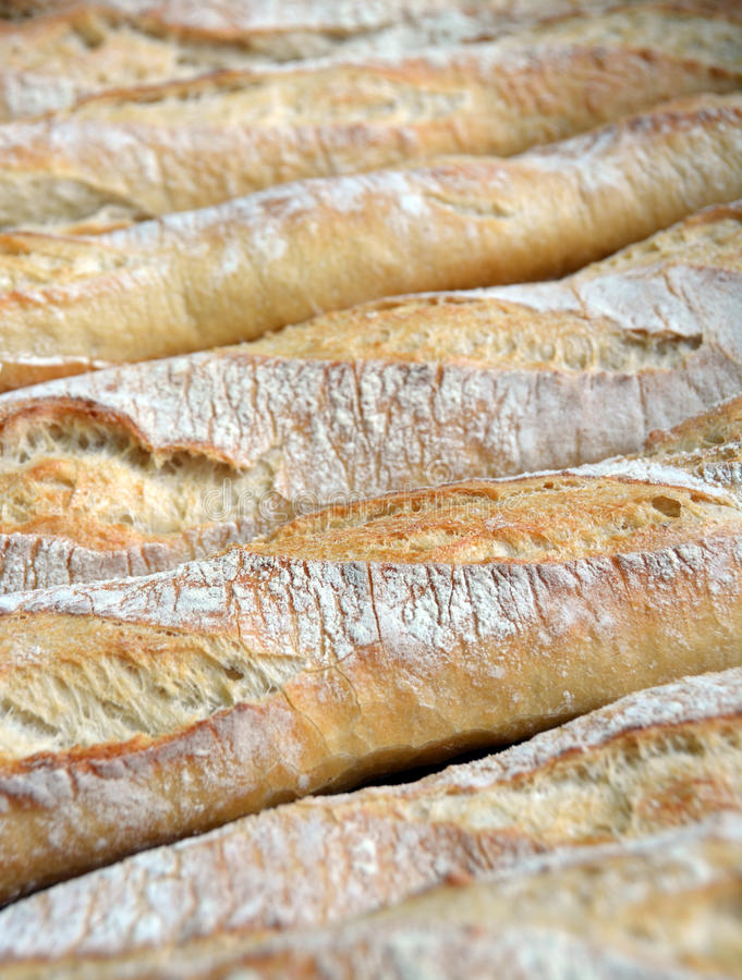 Row of Fresh Baked French Bread Sticks for Sale. royalty free stock photo