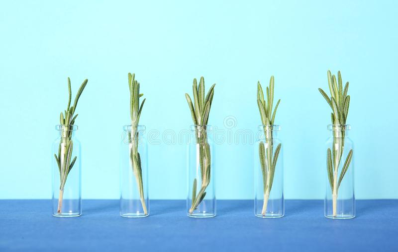 Row of glass bottles with rosemary. On color background stock image