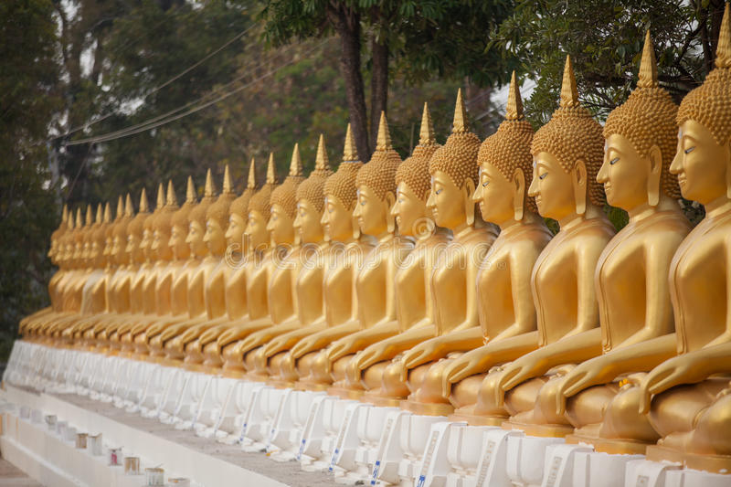 Download A Row Of Golden Buddha Statue Stock Image - Image of travel, culture: 37070623