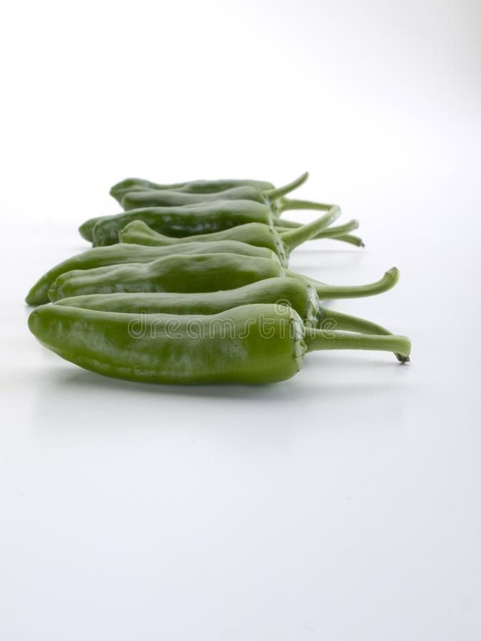 Row of green peppers seen frontally royalty free stock photography