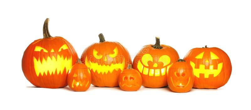 Row of Halloween Jack o Lanterns over white stock image