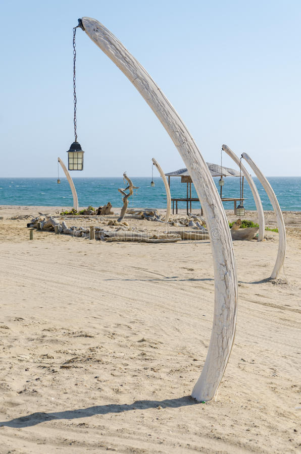 Row of lanterns hanging of whale bones stuck into sand at beach in Angola stock image