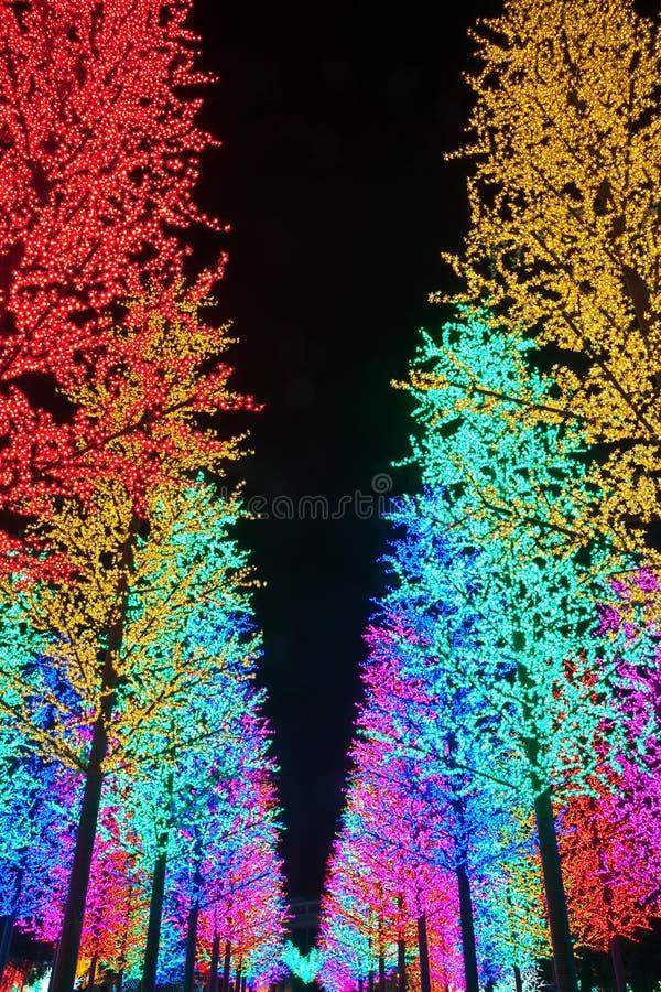 Row of LED Tree Decoration stock image