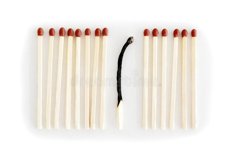 Row of matches, one is burnt royalty free stock image