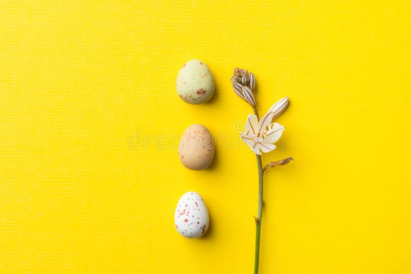 Row of multicolored speckled chocolate eggs small white spring flowers on sunny yellow background with linen paper texture. Easter royalty free stock photo