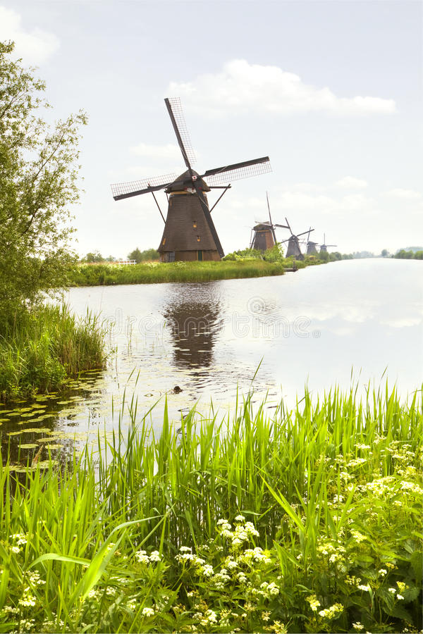 Free Row Of Windmills In Kinderdijk, The Netherlands Royalty Free Stock Photography - 24936187