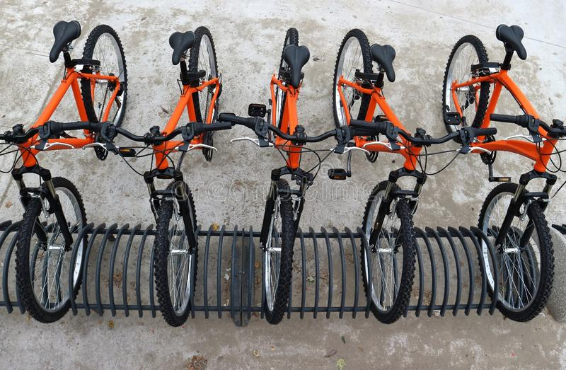 Row of orange mountain bikes parked. Urban mobility. Top view royalty free stock photography