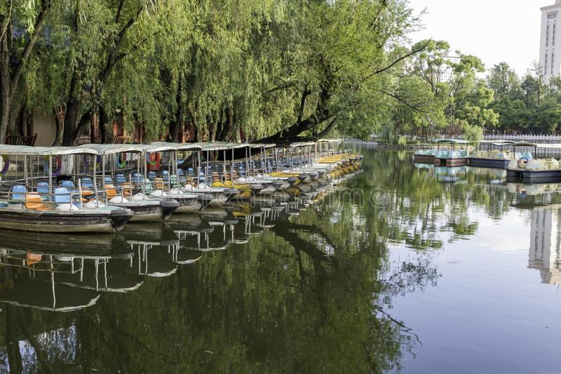 Row of paddle boats on lake day with trees. Reflection, pond, water, green, many, no-people, nobody, fun, vacation, holiday, family, kids, covered, asia stock photo