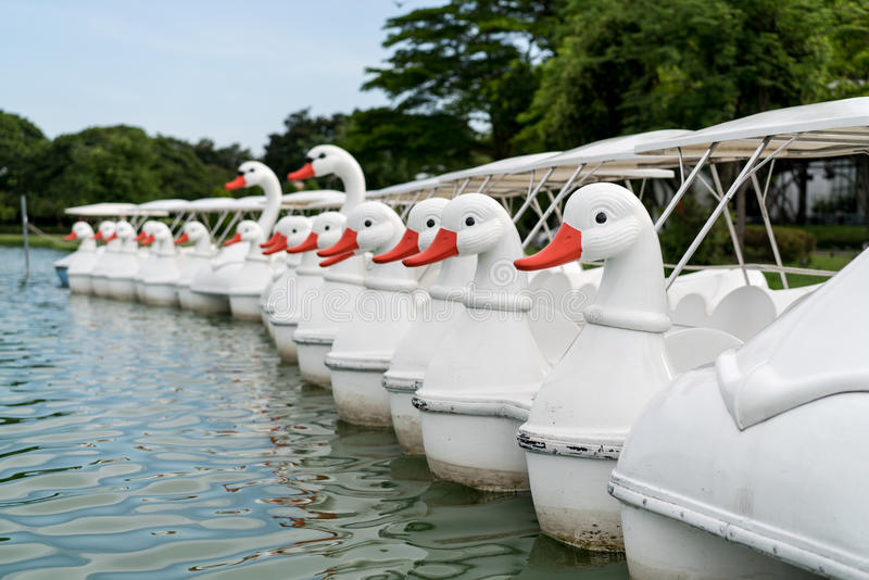 A row of pedal boats. For rental by a lake royalty free stock image
