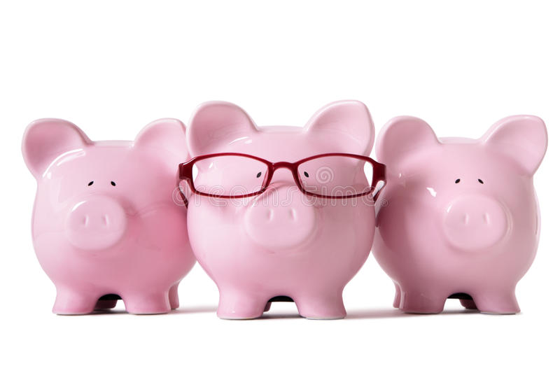 Row of pink piggy banks isolated on white background, savings concept royalty free stock photo