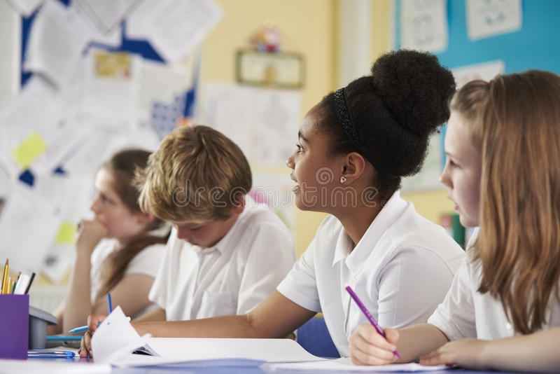 A row of primary school children in class, close up royalty free stock image