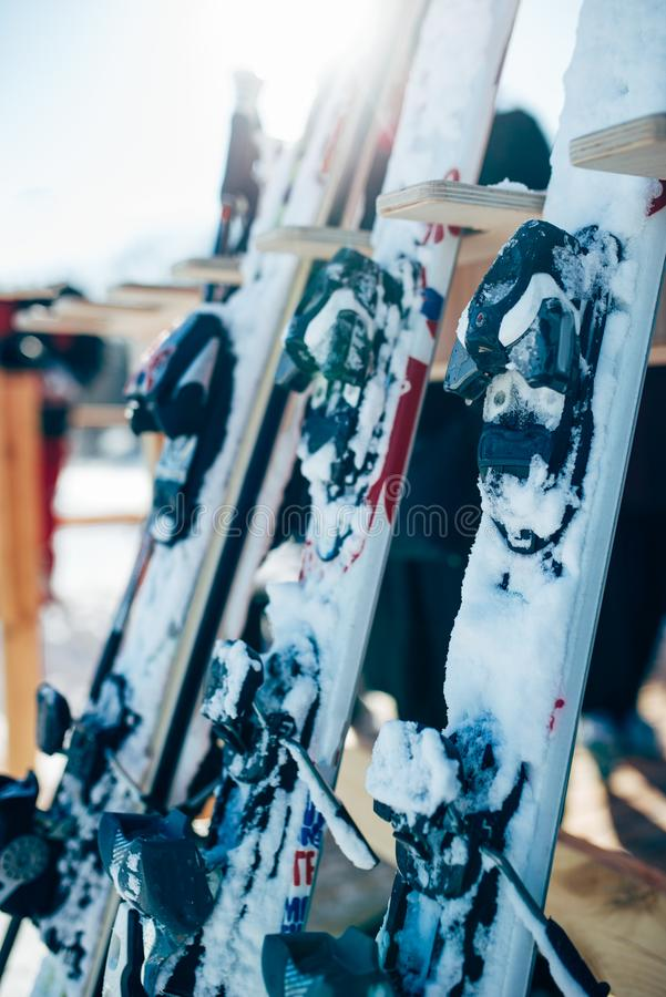 row of snowboards closeup winter extreme sport stock image image