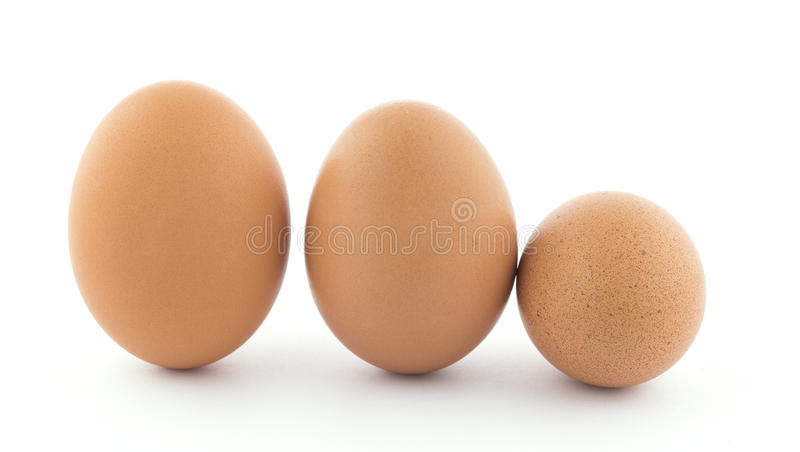 Row of three chicken eggs. Two upright brown chicken eggs and one brown speckled egg laying on it`s side in a row on white stock photography