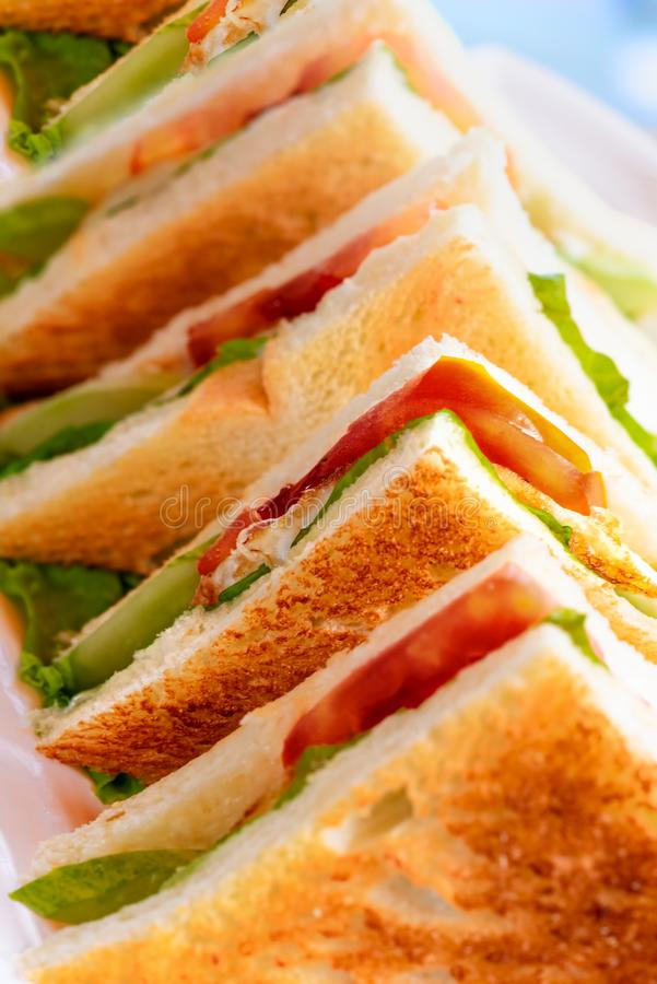 Row of toasted club sandwich with tomato, lettuce, egg and mayonaise. Row of egg toasted club sandwich with tomato, lettuce, egg and mayonaise. Concept of royalty free stock image