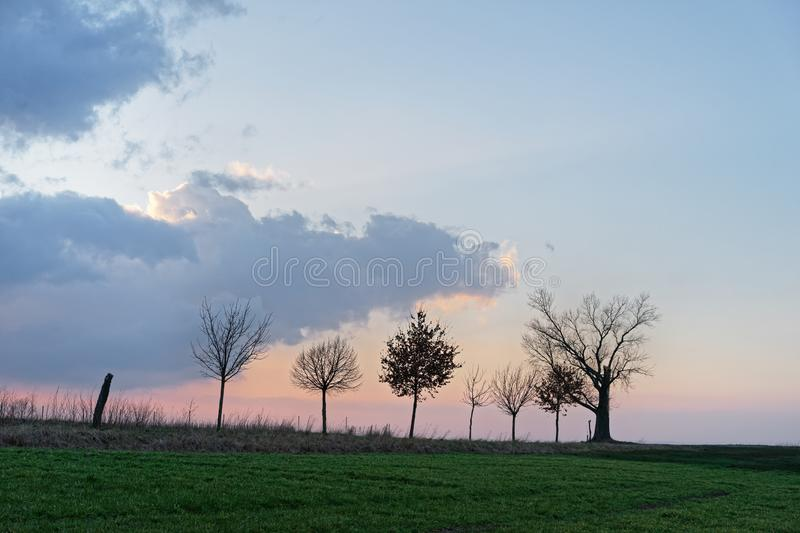 Tree row with striking cloud formation in the evening light. Row of tree silhouettes without leaves with different shapes on a dirt road in front of a striking royalty free stock photos