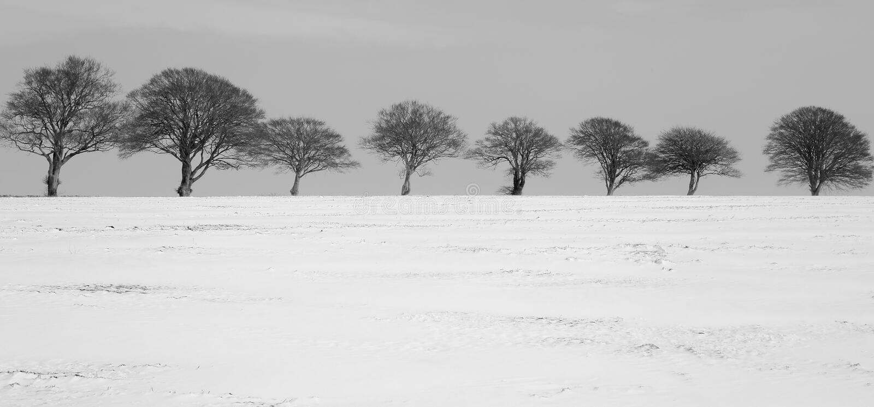 Snowy winter in Devon stock photo