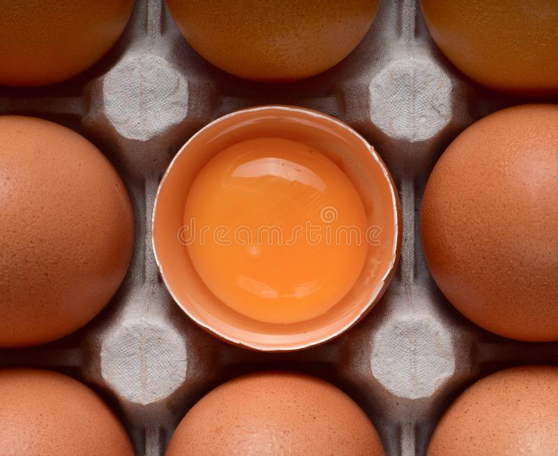 A row of two whole brown eggs and one broken with a bright yolk in the nests stock images