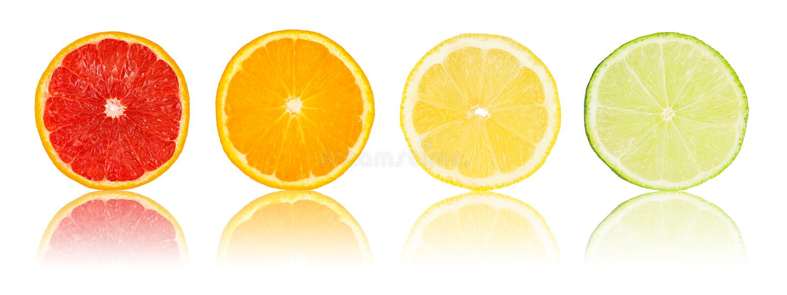Row of various citrus slices. On white background stock photography