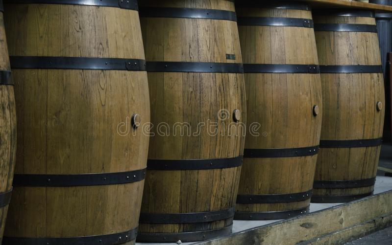A row of vertical hooped wooden barrels royalty free stock images