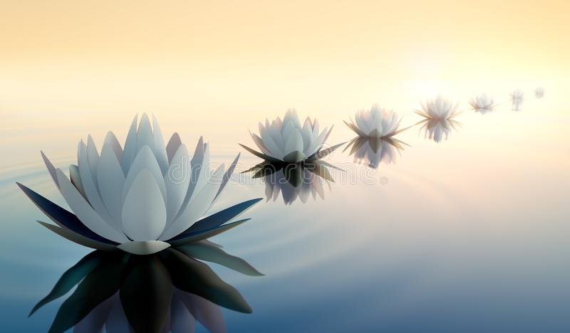 Lotus flowers in a calm sea at sunset stock illustration