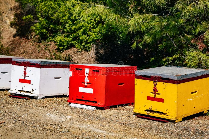 A row of wooden colorful bee hives in summertime. In Greece stock image
