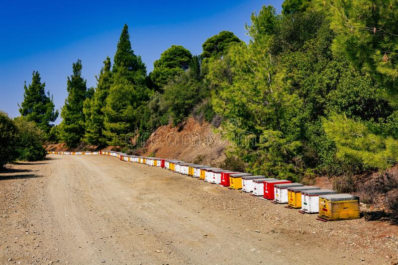 A row of wooden colorful bee hives in summertime. In Greece royalty free stock photography
