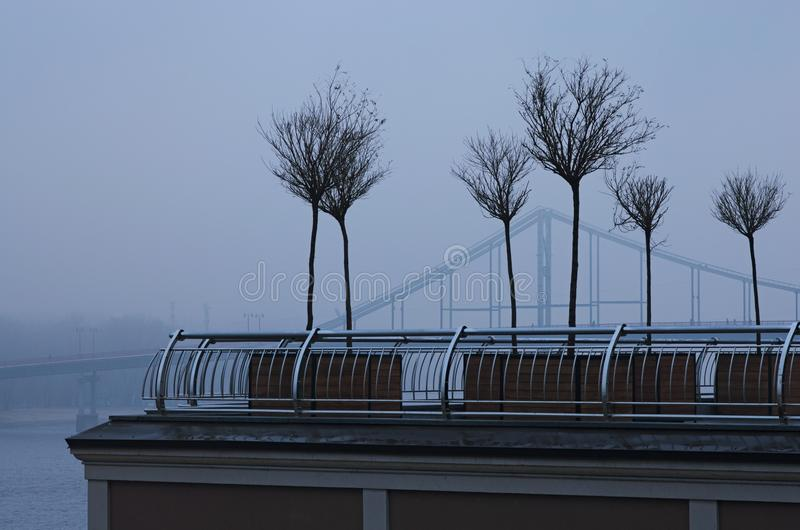 Row of young trees wintering in wooden flower pots at the Poshtova Square is one of the oldest historic squares of the city. Row of young trees wintering in royalty free stock photo