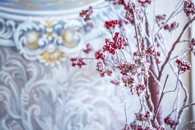 Rowan drzewo z czerwonymi jagodami w śniegu fotografia royalty free