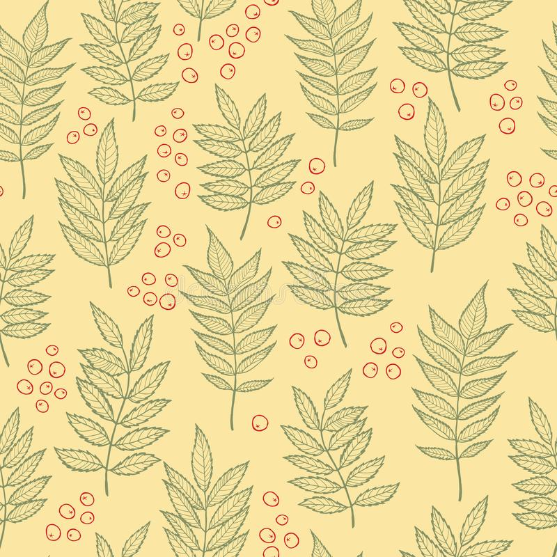 Rowan leaves. Vector seamless pattern. Hand drawn. For covers, printing on fabric, wedding or celebration invitations, cards, social media, blog posts royalty free illustration