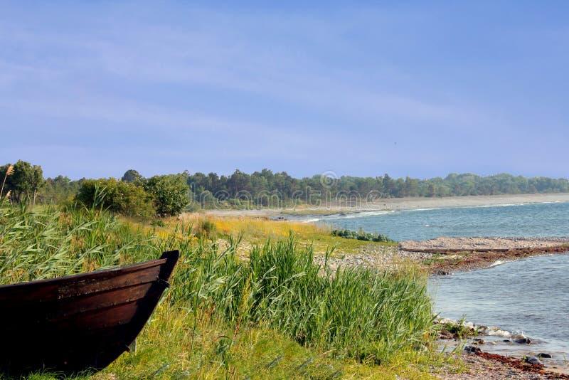 Rowboat на пляже стоковое изображение rf