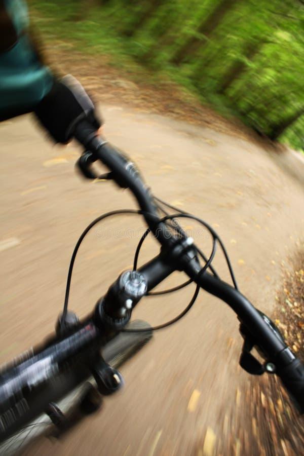 rower jazda lasowa halna obraz stock