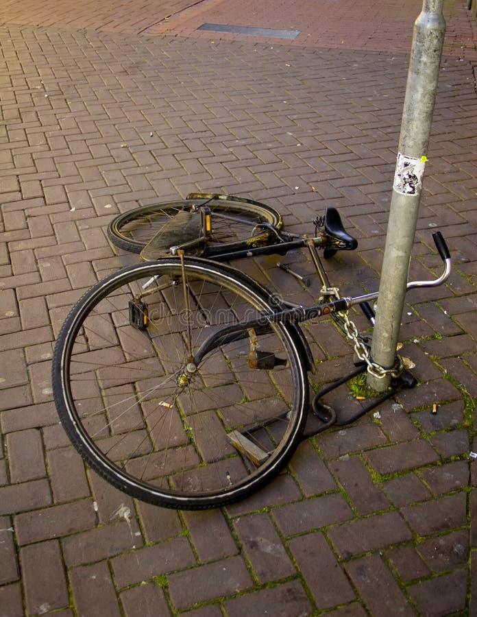 rower się fotografia royalty free