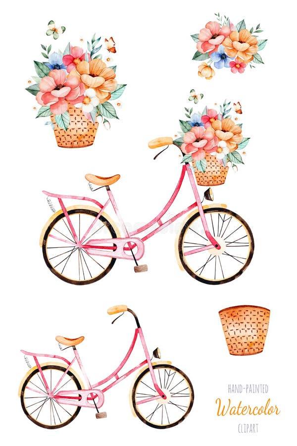 Rower z kwiatami w koszu, bukiet royalty ilustracja