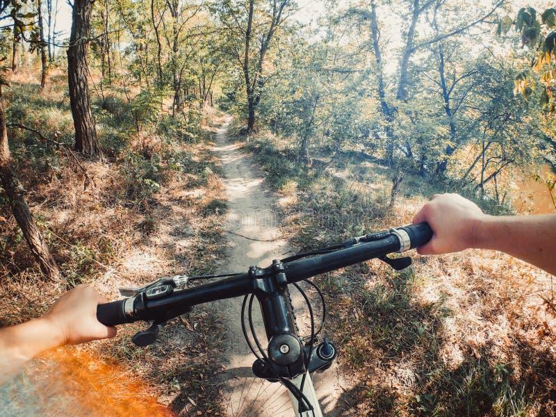 Rowerowa kierownicy ręki ścieżki lasowych drzew zieleń iść pro akci kamera zdjęcia stock