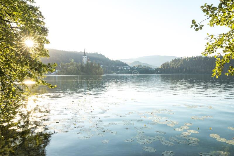 Rowerowa turystyka w Slovenia zdjęcie stock