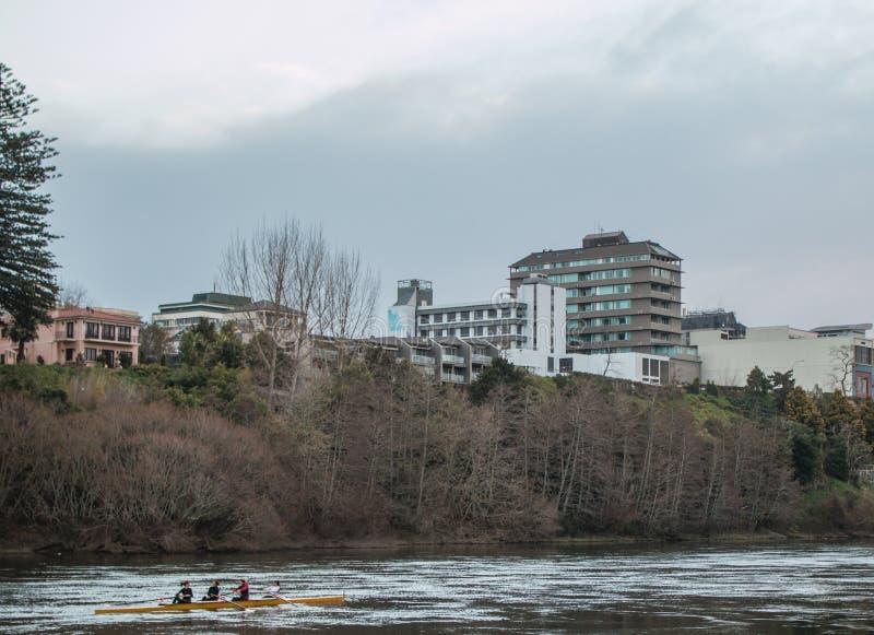 Rowers на реке стоковая фотография rf