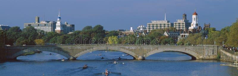 Rowers на реке Charles, стоковое фото