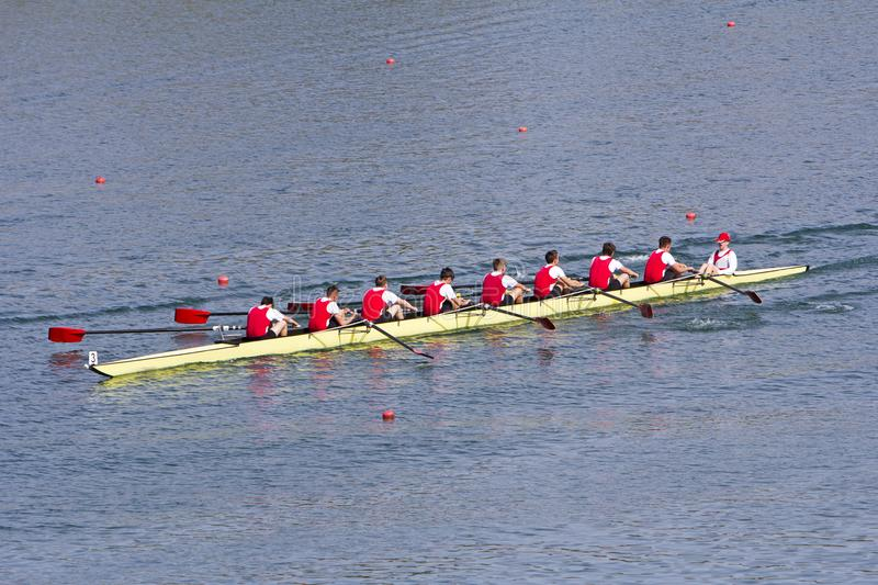 Rowers in eight-oar rowing boats royalty free stock image