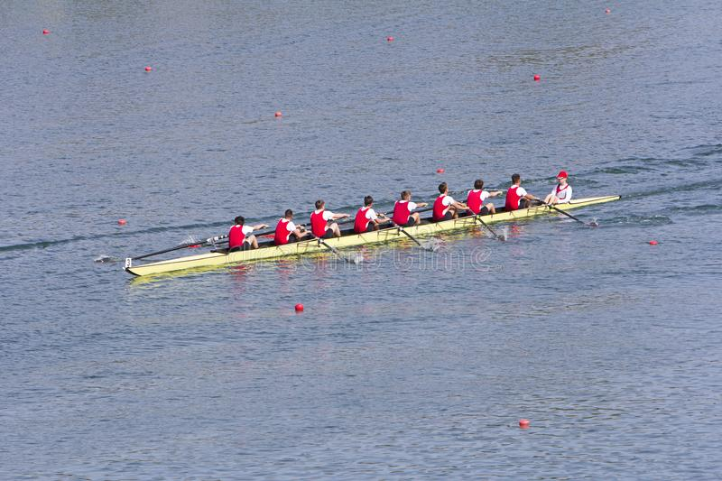Rowers in eight-oar rowing boats stock photography