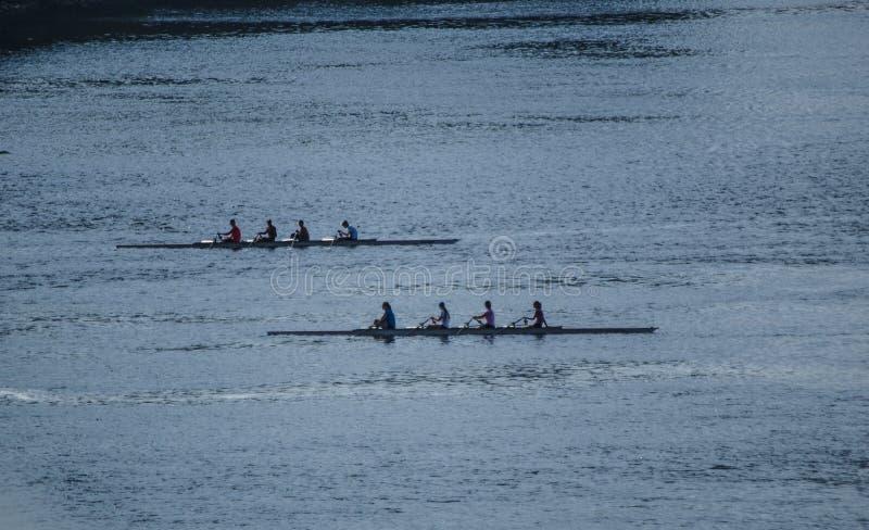 Rowers na Ottawa rzece fotografia royalty free