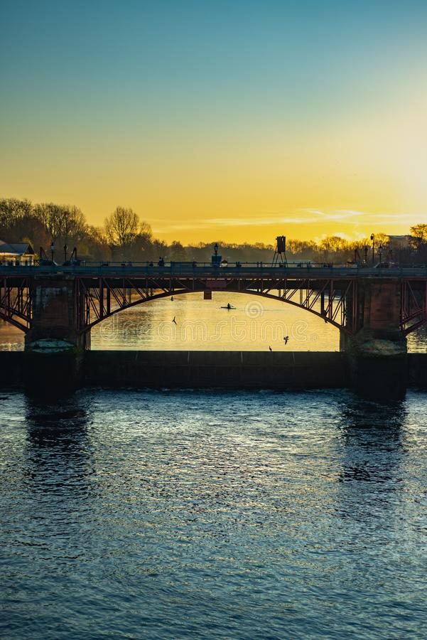 Rowers Silhouetted su Sunrise Behind un ponte sul fiume Clyde a Glasgow Scotland immagine stock