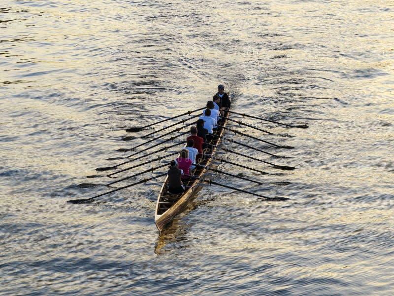 Rowers trenuje na rzece fotografia stock